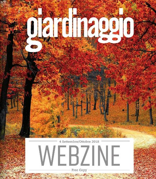 Magazines_pic8